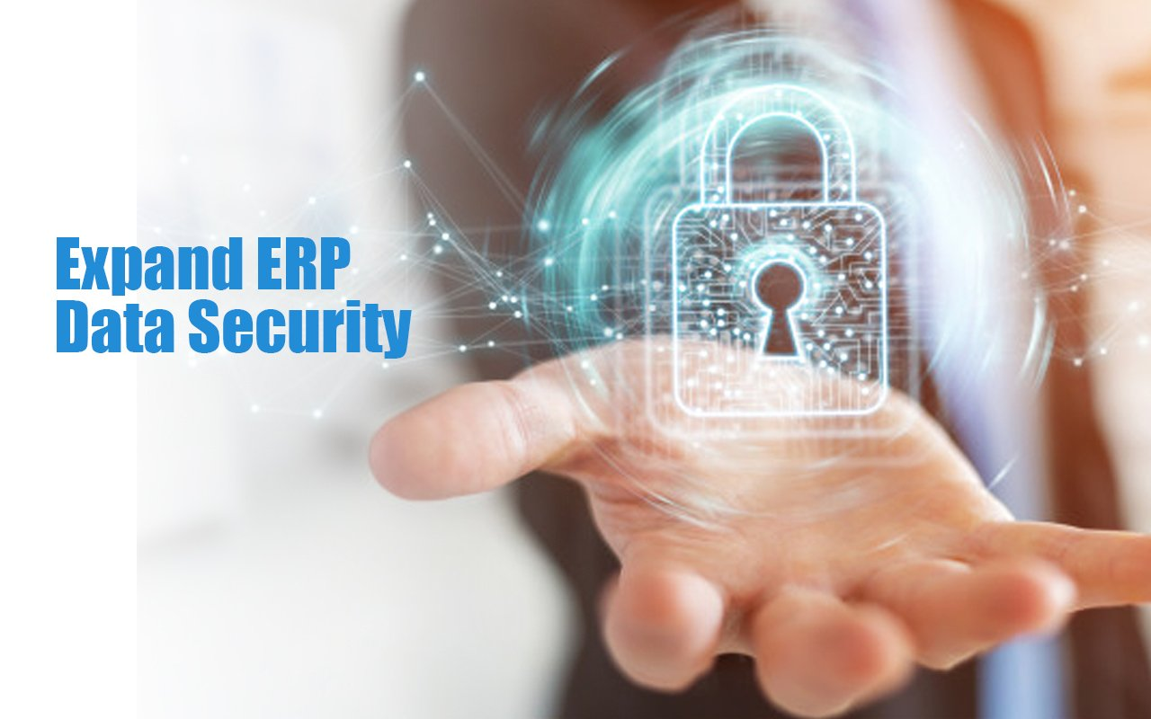 Expand ERP Data Security