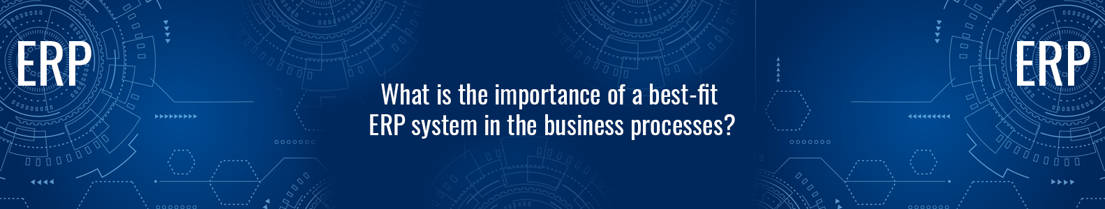 What is the importance of a best fit ERP system in the business processes